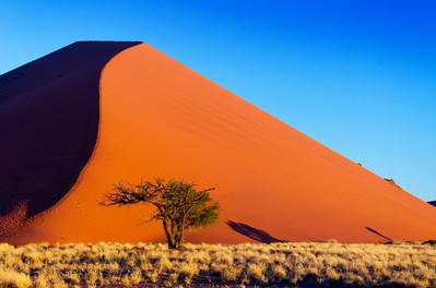75_Taste of Namibia_ss_127594361