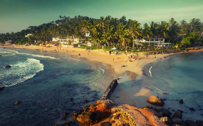 shutterstock_240895309_Mirissa_ Sri Lanka